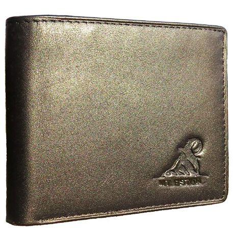 Mt. Eston RFID Blocking Leather Wallet