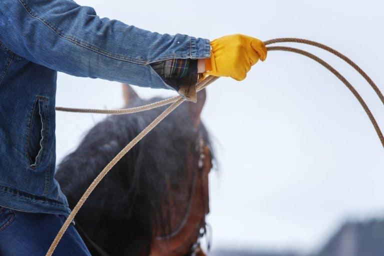 Types of Work Gloves - Ranch Gloves