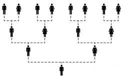 Autosomal DNA