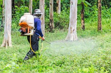 Average Cost of Weed Killers