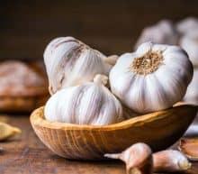 Benefits of Store - Bought Dog Food - Garlic