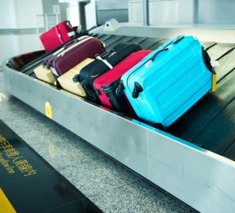 Best for Budget Travelers Travelpro Maxlite3