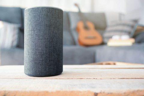 Do You Use a Voice Assistant - alexa