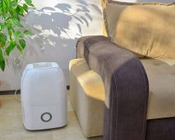Tips for Setting Up a New Dehumidifier - close to furniture