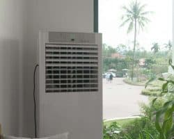 Tips for Setting Up a New Dehumidifier - doors open