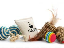 Types of Cat Toys - catnip toys