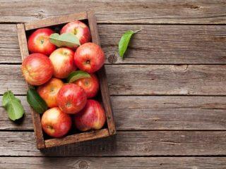Types of Juicers - Apple