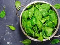 Types of Juicers - Spinach