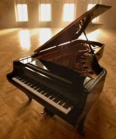 Types of Keyboard Pianos - Stage