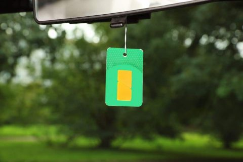 Unique Types of Air Fresheners